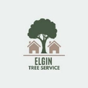 Elgin Tree Service